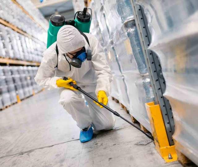 Termite control service